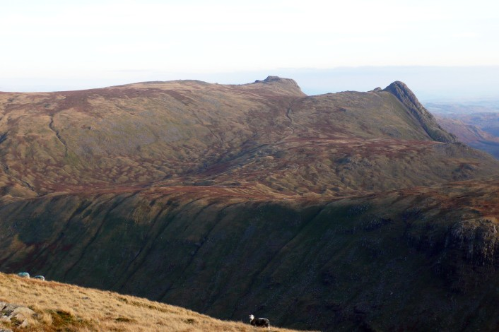 The Langdale Pikes with the drumlin fields around Stake Beck flowing from centre to left