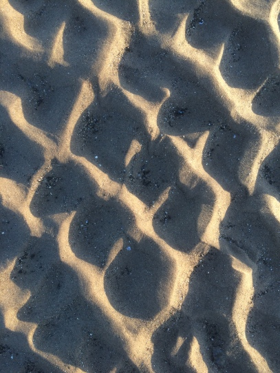 Circles in the Sand 019