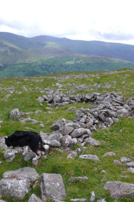Crummock slabs, Ling Crag; Dodd Cairn; Gale Fell; Gable moonrise 028